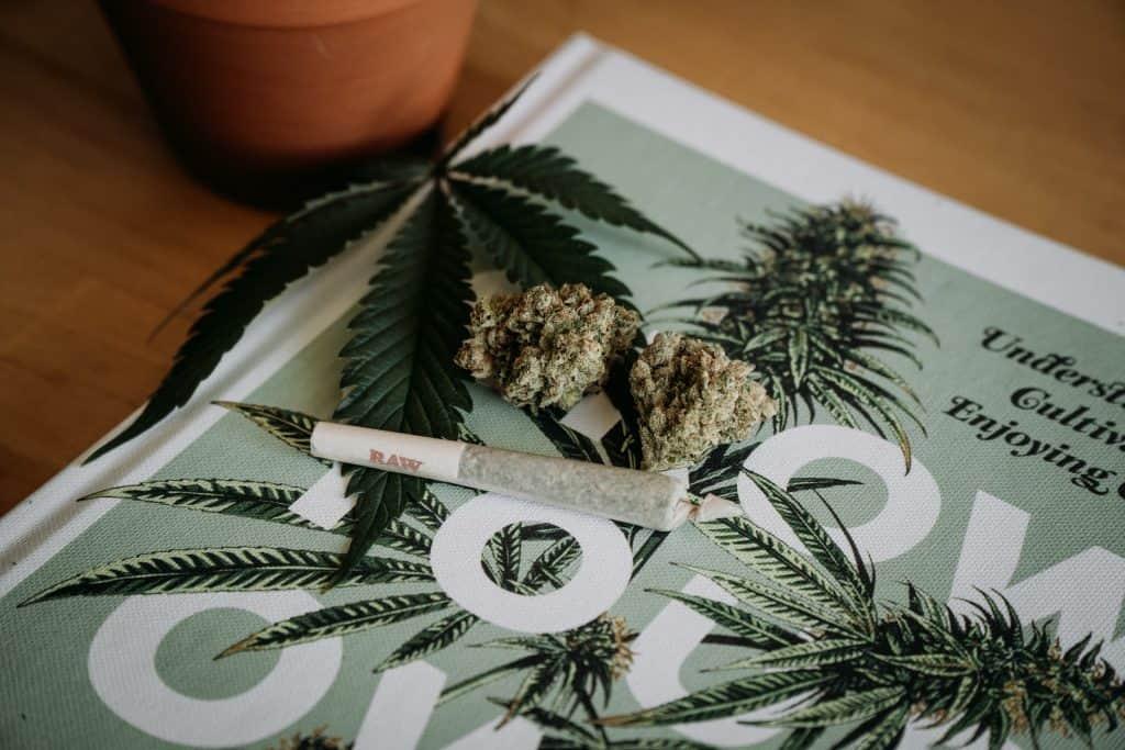 Cannabis Coffeeshop De Rode Leeuw Zwolle